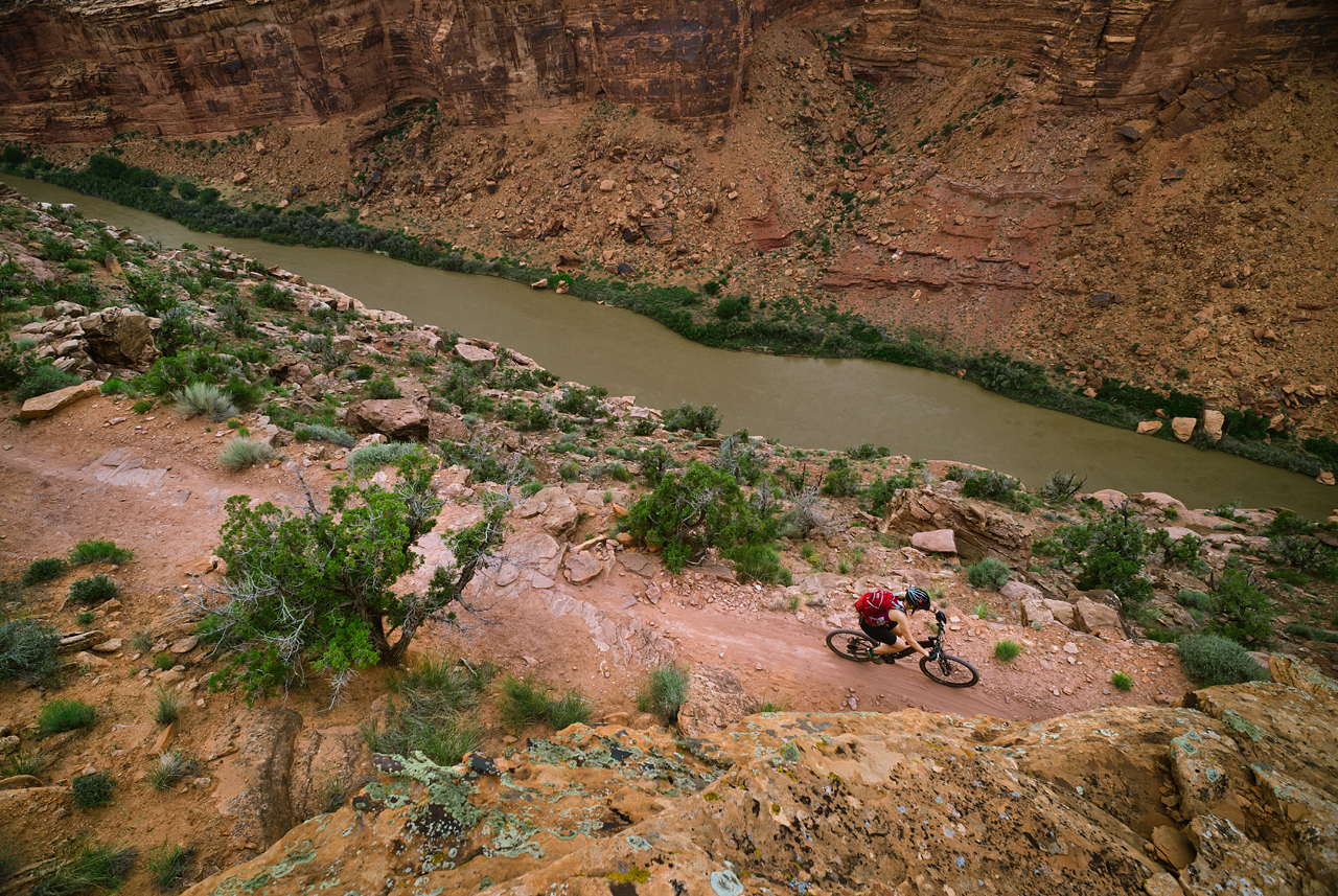 A view of the Colorado River from the Porcupine Rim Traill.